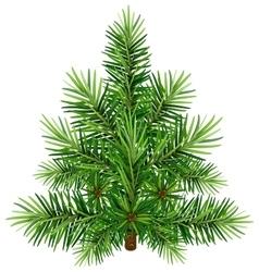 Green christmas pine tree vector