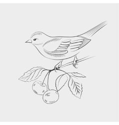 Hand drawn bird on a branch vector