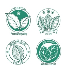 Mint leaf logo icons or menthol spearmint labels vector