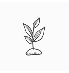 Sprout sketch icon vector image