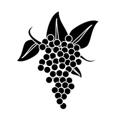 bunch grape wine icon pictogram vector image