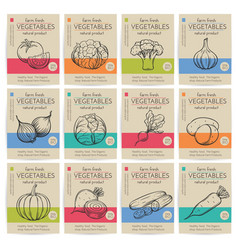 hand drawn vegetables posters set vector image vector image