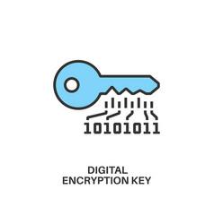 digital encryption key icon vector image