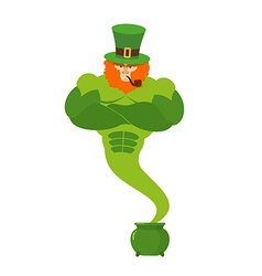 Genie leprechaun magical spirit of St Patricks Day vector image