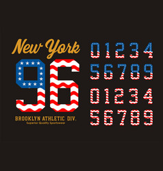 new york set number flag american vector image vector image