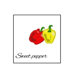 Vegetables food sweet pepper paprika vector