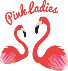 Pink ladies vector