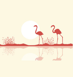 Flamingo on riverbank scene silhouette vector