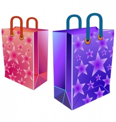 two packages vector image vector image