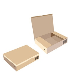 Opened and closed brown boxes vector