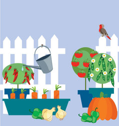 Garden of vegetables vector