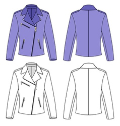 womans jacket vector image