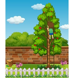 Boy climbing apple tree vector