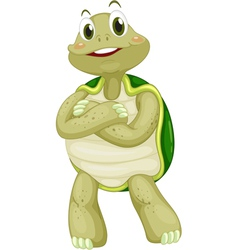 Animated turtle vector image