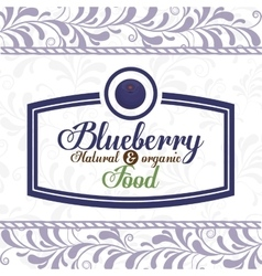 delicious blueberry design vector image