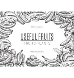 Design bananas of sketchesdetailed citrus vector