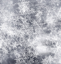 Forst Background vector image vector image