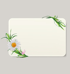 Label camomile vector