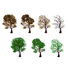 The set of trees four seasons vector