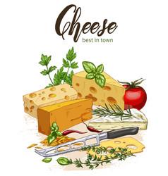 Color realistic sketch of cheese vector