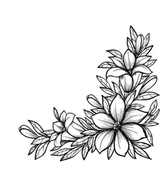 Black and white branch with flowers vector