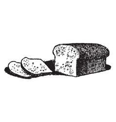 Loafs of bread vintage vector