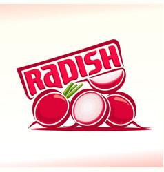 logo for radish vector image vector image