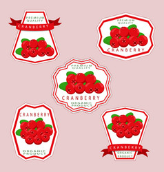 The theme cranberry vector
