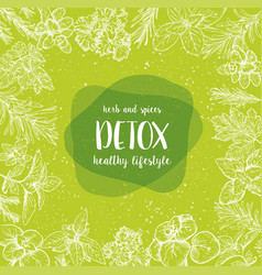 Detox label herbs and spices engraving vector
