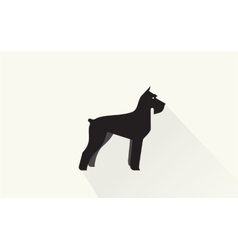 Miniature schnauzer icon vector