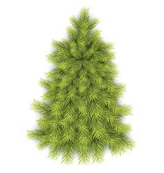 Fir Tree vector image vector image