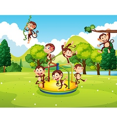 Many monkeys playing in the park vector image