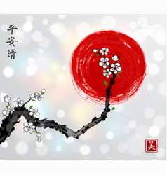 Sakura cherry branch in white blossom and red sun vector
