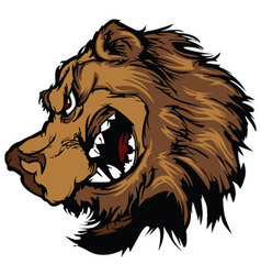 Bear grizzly mascot head cartoon vector