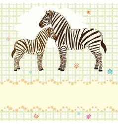 Nice card with two zebras vector image