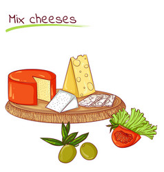 Mix cheeses and vegetables vector