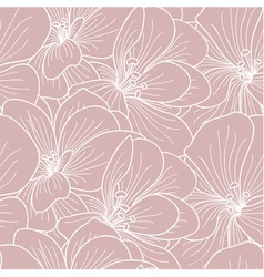 Pink and white geranium flowers line drawing vector