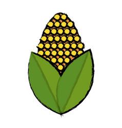 Corn bioful alternative energy ethanol vector