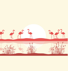 flamingo scene on lake silhouette vector image