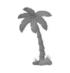 Palm tree icon in monochrome style isolated on vector