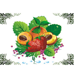 still life - apricots and strawberries on green vector image vector image