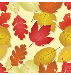 autumn - seamless image vector image