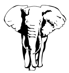 Drawing silhouette of a moving elephant vector