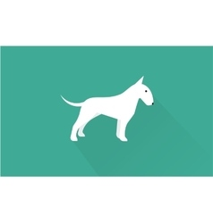 english bull terrier icon vector image vector image