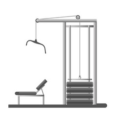 gym or fitness sport club equipment trainer vector image