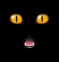 Realistic cat face on a black background vector