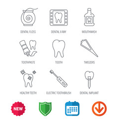 Dental floss tooth and implant icons mouthwash vector