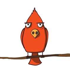 Funny red cartoon bird vector image