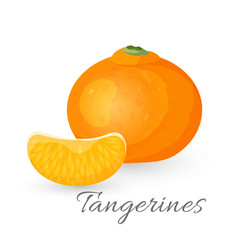 tangerine tropical fruit isolated on white vector image