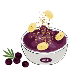 Tropical acai vector